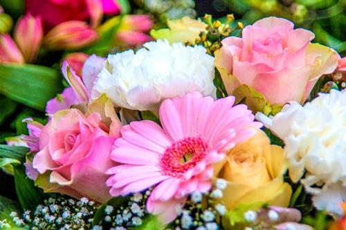Flores en Italiano